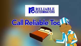 Reliable Exterminators - Bed Bug Treatment