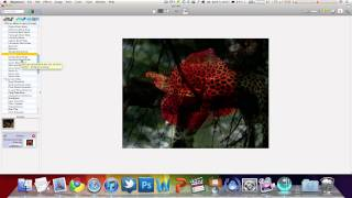 Add Effects To Photos The Easy Way On Mac -- iMaginator
