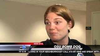 Osu's New Star: A Bomb-sniffing Dog