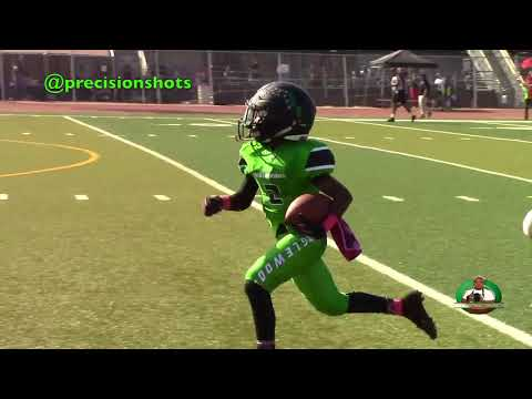 💯☀️🌴 Snoop League Inglewood Jets (CA) vs. Long Beach Patriots (CA) 11U 2017