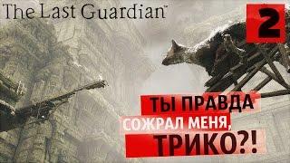 Враг моего врага ● Last Guardian #2 [PS4Pro]
