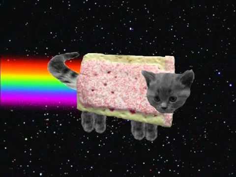 Realistic Scratch Cat