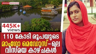 Mango Meadows Kaduthuruthi, Kerala | വെറും 350 രൂപക്ക് 110 കോടി മുടക്കി നിർമിച്ച മാംഗോ മെഡോസ്