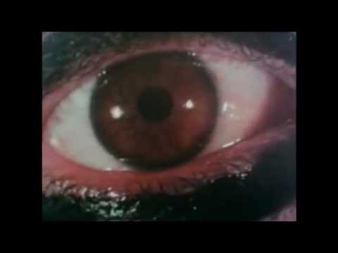 Deep Red (1975) - Trailer
