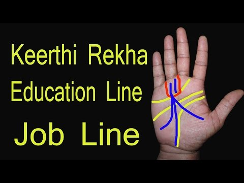 Job line in palmistry | नौकरी के योग | adrushta rekha | care