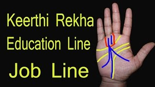 Job line in palmistry | नौकरी के योग | adrushta rekha | career line |hindi palmistry