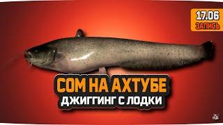 Сом на реке Ахтуба Русская Рыбалка 4