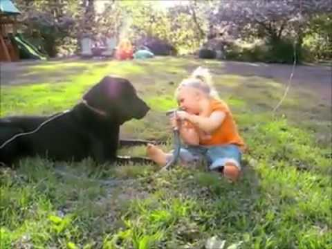 A little girl playing with her black dog 😊