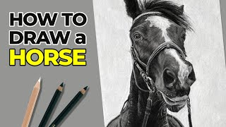 How to Draw a Hoŗse with Charcoal