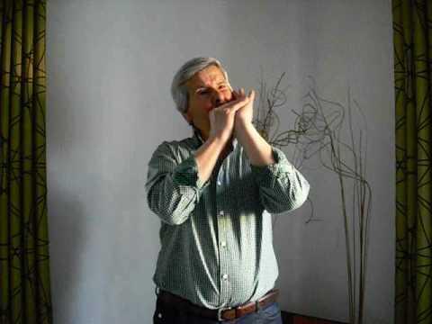 Eduardo Bonan�a - Harmonica La Vie en Rose