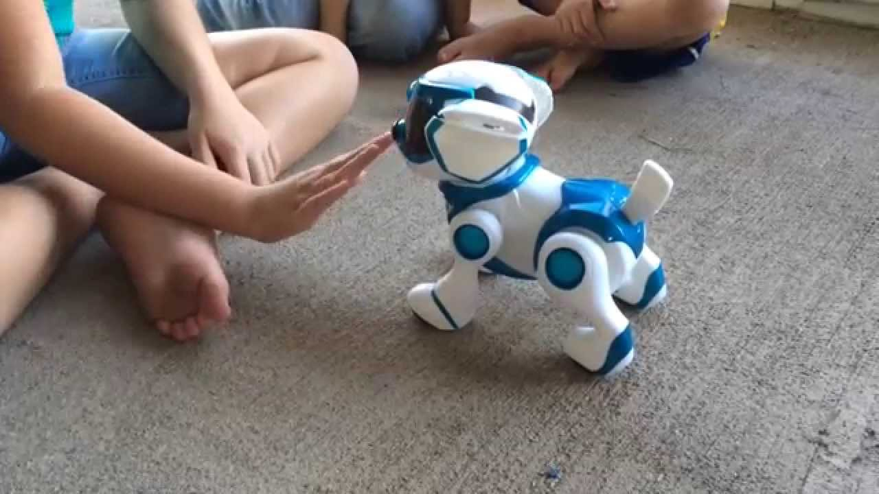 Tekno Robotic Puppy Toy Review Youtube