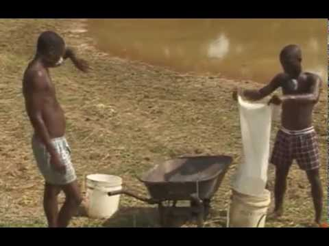 ABC of Fish Farming. Fish Farming in Nigeria using earthen ponds.