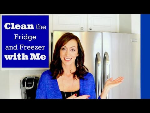 Clean with Me | Fridge and Freezer Cleaning Routine