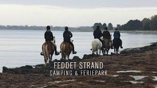 Feddet Strand Camping & Feriepark
