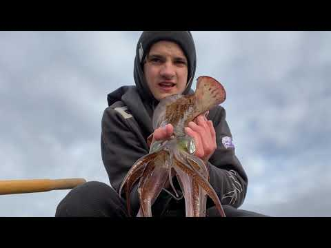 Southern Calamari Fishing || Blackmans Bay Tasmania