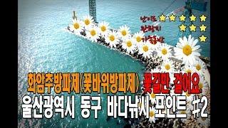 남해 바다낚시 (울산광역시 화암[꽃바위]방파제) #화암…