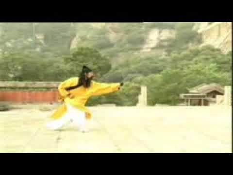 Download XING YI by Master Wang