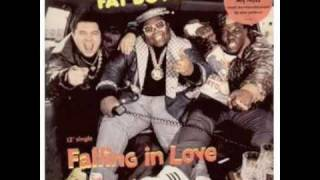 Fat Boys - Falling In Love (extended mix) [vinyl]