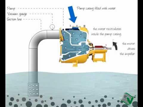 Varisco funcionamiento bomba autocebante youtube for Bombas de agua para estanques de jardin