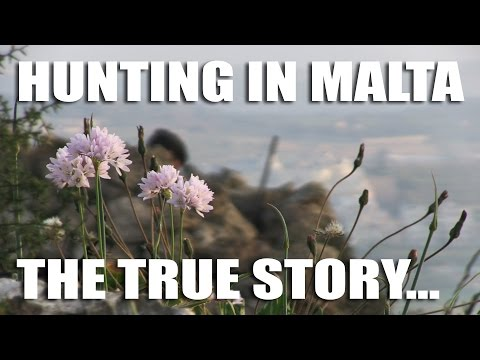 Hunting In Malta - The True Story