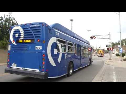 359 pace bus