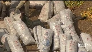 Burkina Faso : marché de Bobo Dioulasso