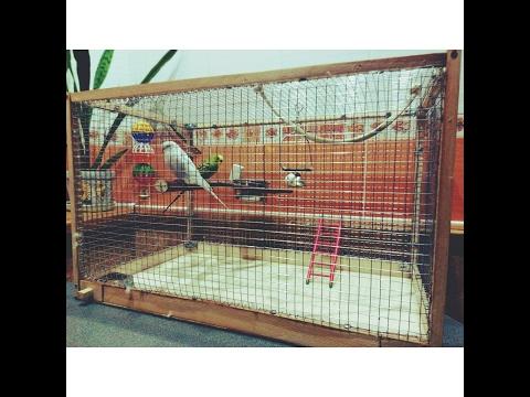 Клетка для птиц своими руками, за 2 минуты!