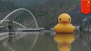 Giant rubber duck art installation, natangay ng bagyo sa China!