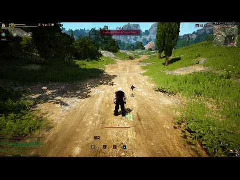Black Desert Online - Striker Mobility Bug