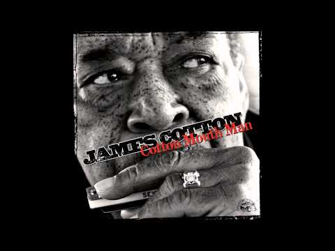 James Cotton - Something For Me (Cotton Mouth Man 2013) mp3