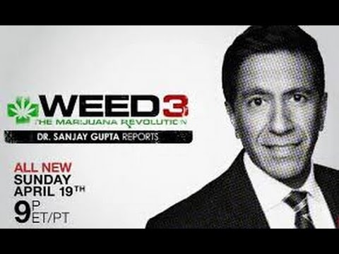 WEED 3   The Marijuana Revolution   Dr  Sanjay Gupta Reports