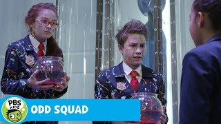 odd squad the power of adding zero pbs kids