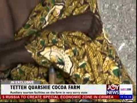 Cocoa farm - Joynews exclusive (31-3-14)
