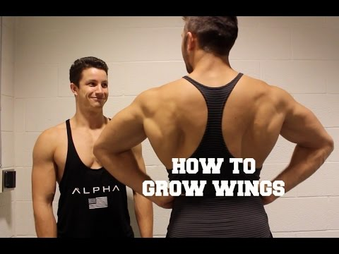 how to grow wings without redbull - youtube, Muscles