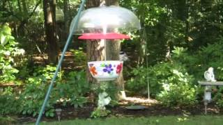 Paintedseasons.com Hanging Bird Feeder