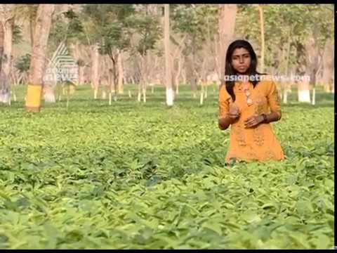 Ella Roadum Delhikku | Promo