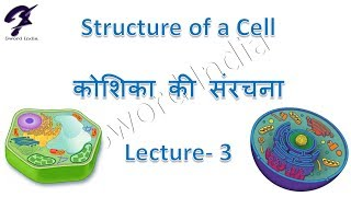 Structure of a cell, Lecture-3 (Nucleus ,Nucleolus ,Chromosomes,Genes) for classes 8 & 9 in Hindi
