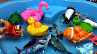 Learn colors with zoo animals Learn wild zoo animals names and sounds Zoo animals for kids