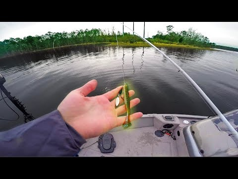 Power Plant Speed Fishing -- BEST Lure For New Lake Fishing