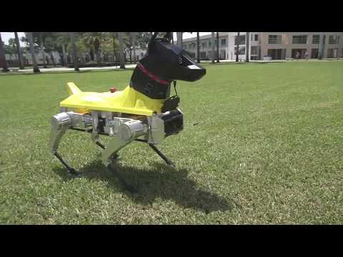 This Boston Dynamics-Esque Bot Has Horrifying, Human-Like Eyes