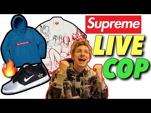 THIS DROP WAS INTENSE! Supreme F/W '19 Week 2 Live Cop