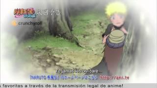 Naruto Shippuden 315 Español