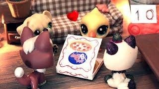 Tipi ihastuu! + Hungry pets | Joulukalenteri 10