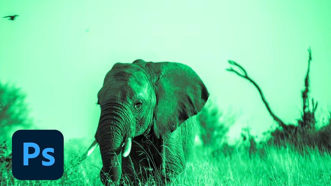 Photoshop Playbook: Black & White Conversion