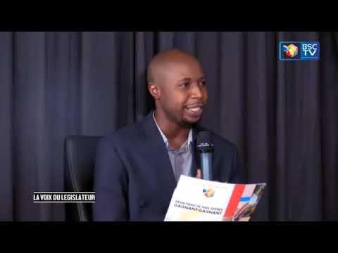 EMISSION LA VOIX DU LEGISLATEUR Avec Merveil BAVABEBAY_04_05_2020 (BSC Tv )