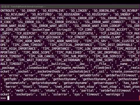 Leçon 1 [Python : le réseau] : module socket
