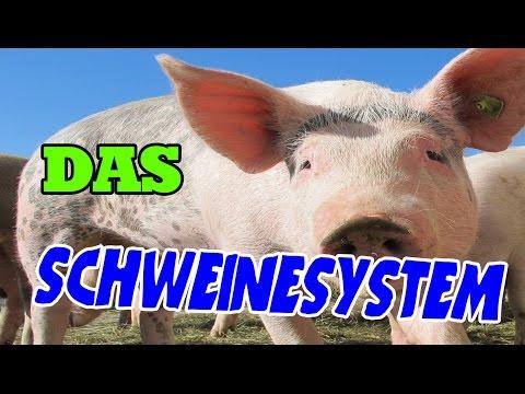 Das Schweinesystem vom Foodwatch Aktivisten Matthias Wolfschmidt ...