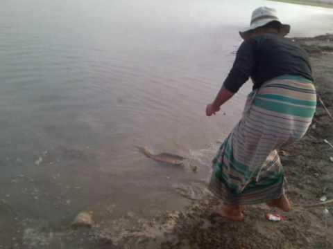 Fishing at Ghazi ghat by Isaac ahsan Imran and sohail