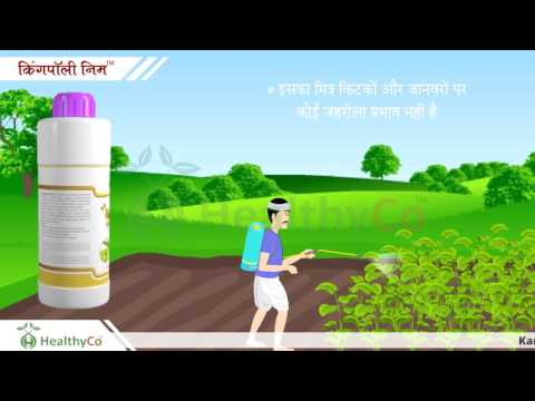 agricultural product video animation Animated Video Presentation