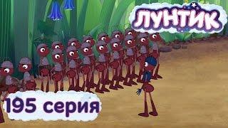 Лунтик и его друзья - 195 серия. Командир